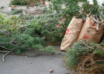 gardening-waste-london